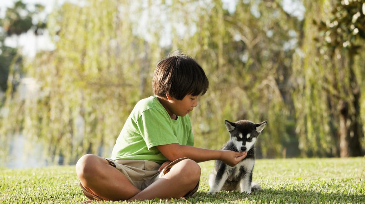 At What Age Should You Buy Your Child A Puppy?